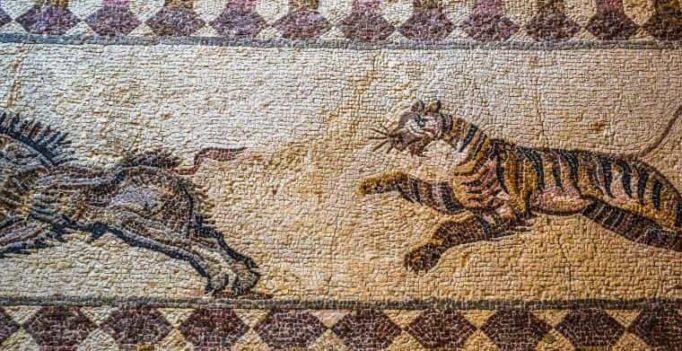 Tieger jagt Wildschwein Boden-Mosaik nach antiken Vorbild